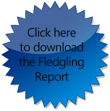 Click to download the Fledgling Report
